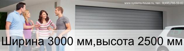 Гаражные секционные ворота Alutech TREND ширина 3000 мм, высота 2500 мм